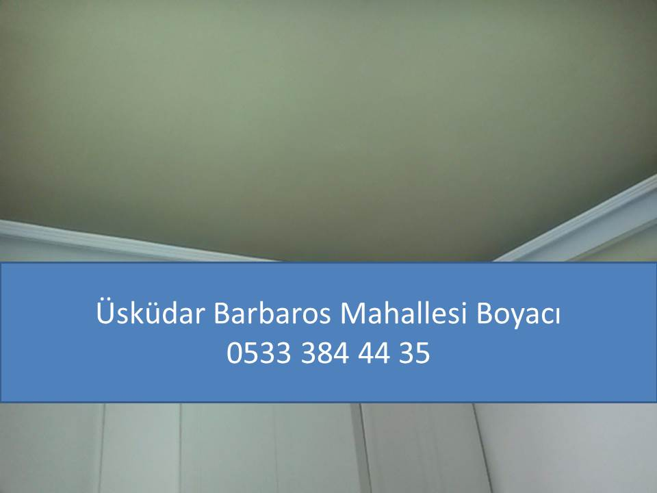 ÜSKÜDAR BARBAROS MAHALLESİ BOYACI